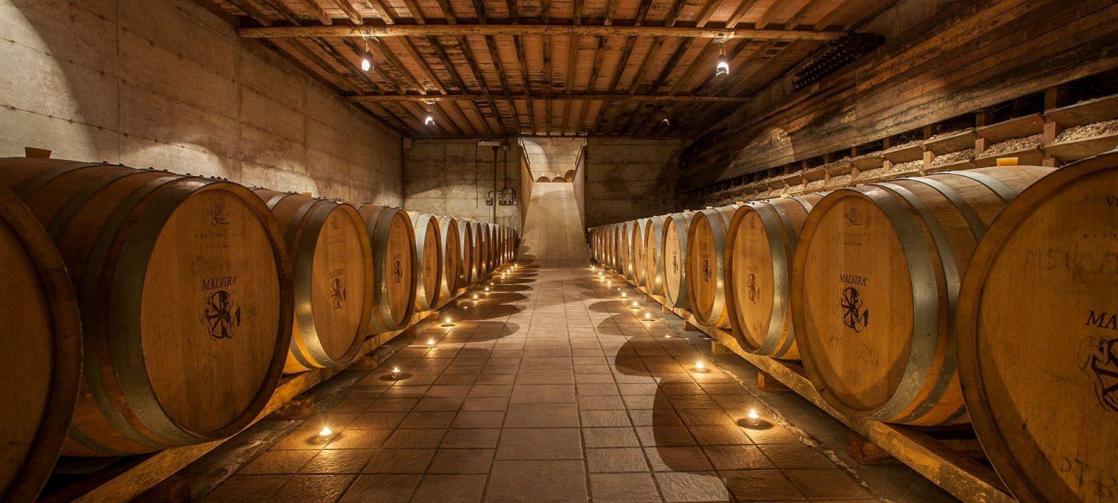 Visite in cantina e degustazioni - Malvirà, da 3 generazioni produciamo vino nel Roero